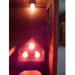 2 Person Near Infrared Sauna Kit