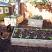 Backyard garden *Chickens not included