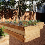 2'x8' Cedar Raised Garden Bed Kit