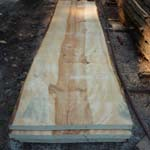 Cedar Table Slabs